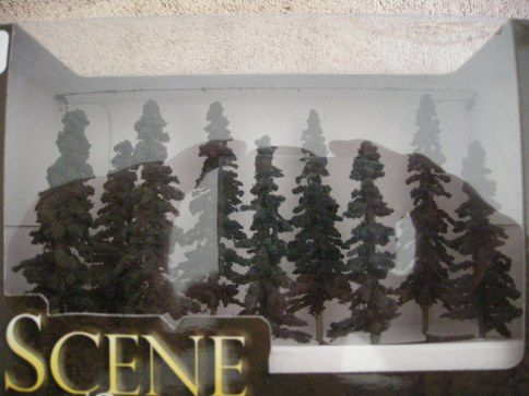 "32103 3 - 4"" Conifer Trees"