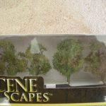 """32108 2 - 3"""" Elm Trees"""